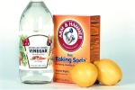 Vinegar and baking soda 150